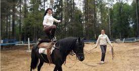 вольтижировка на лошади
